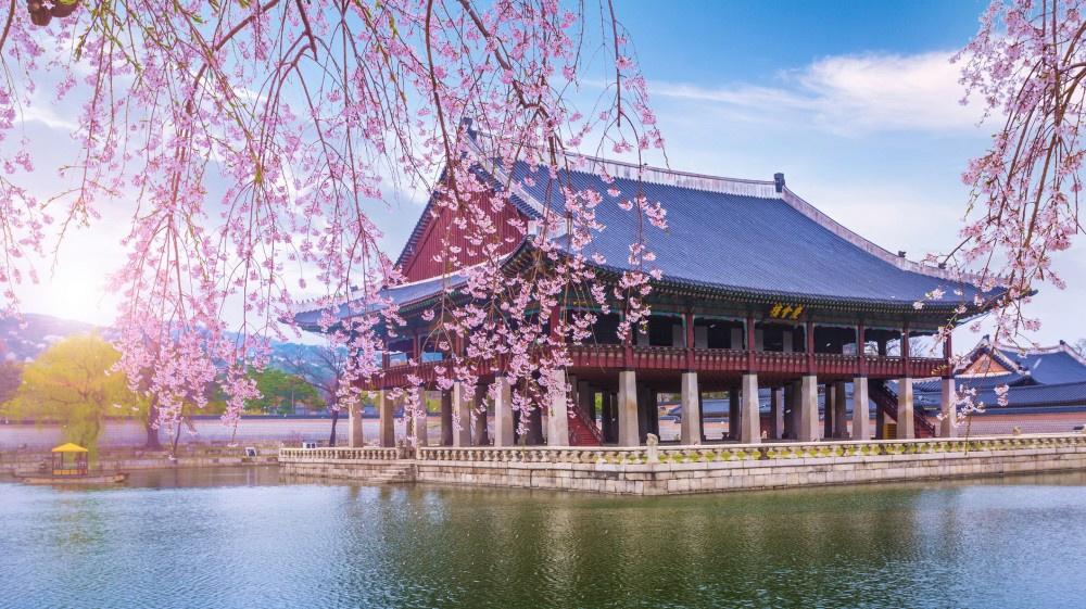 Korea találat